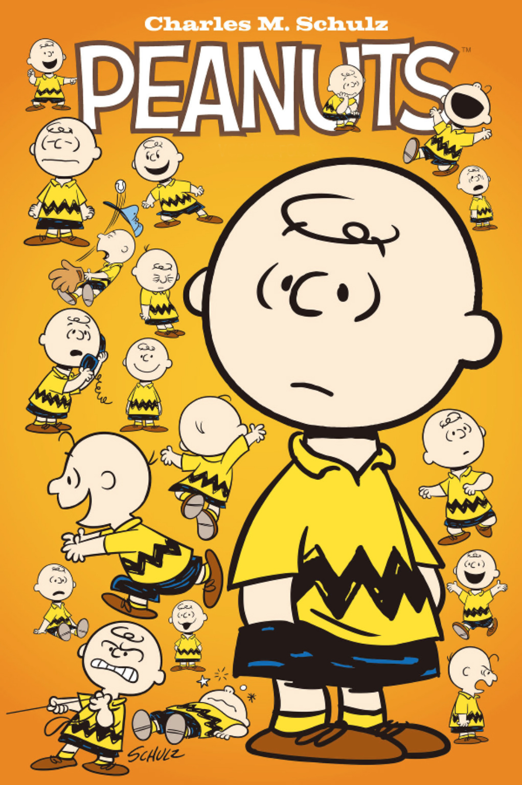 peanuts thanksgiving house flags
